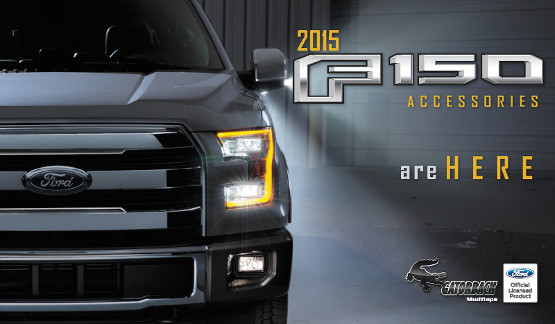 New 2015 Ford F-150 Accessories